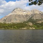 Have Kids, Will Travel: Waterton
