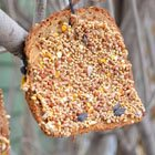 Old bread bird feeders