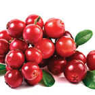 Superfood: Cranberries