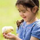 How to choose the right pet for your toddler