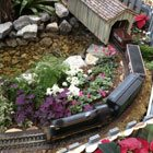 The Royal Botanical Gardens' Train Show: A new winter tradition