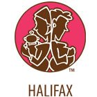 Mommy Connections program now in Halifax/Dartmouth