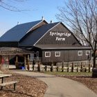 Get into the holiday spirit at Springridge Farm