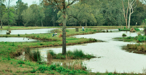 DuBose Pond