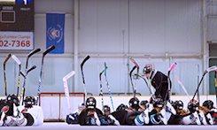 Strictly Hockey Women's Hockey | Source For Sports