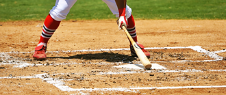 Source For Sports | Wood Baseball Bats