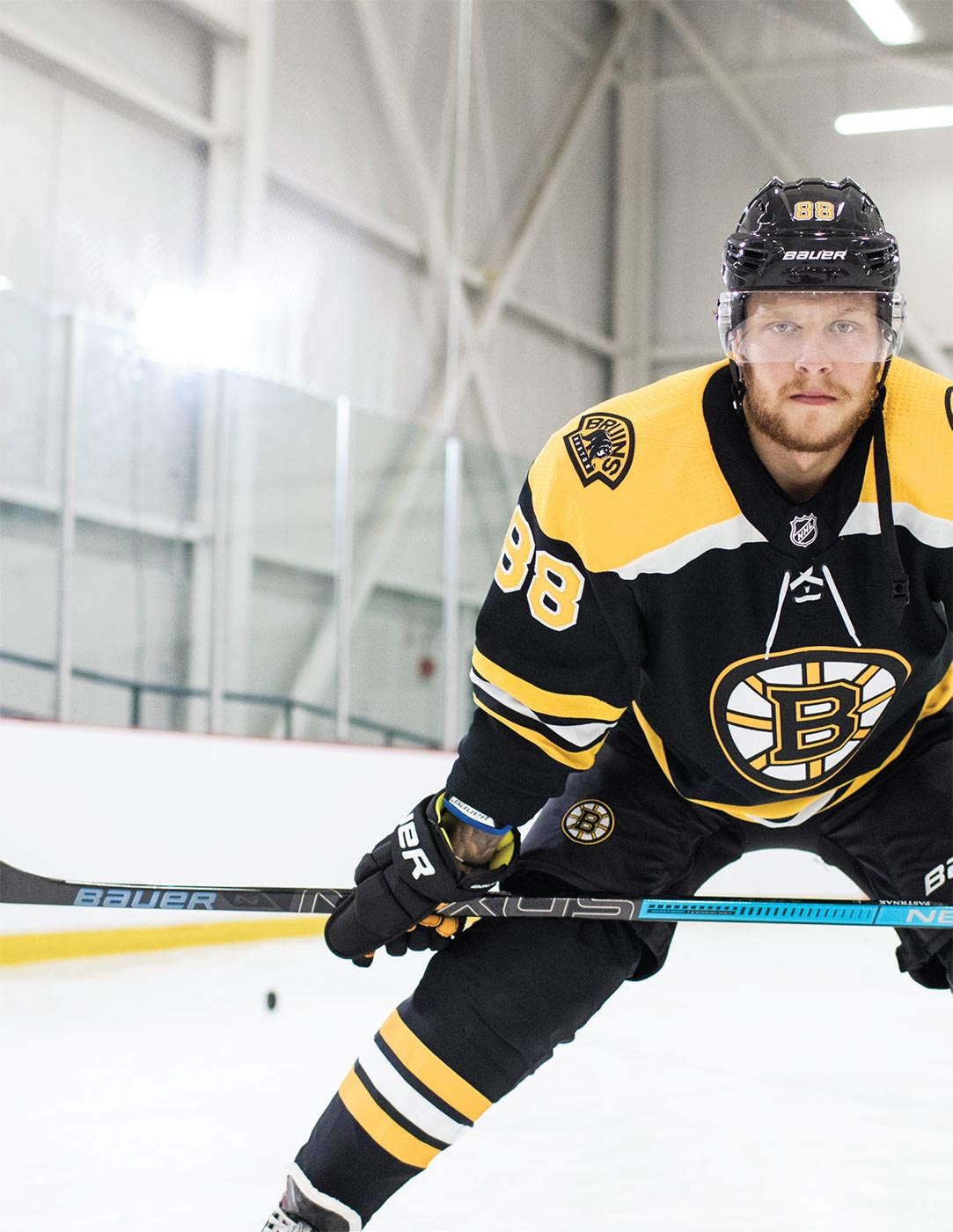 David Pastrnak Bauer Nexus 2N Pro | Source For Sports