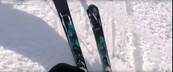 Völkl Flair Women's Skis