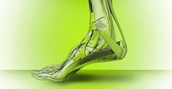 Superfeet Insoles at Source For Sports