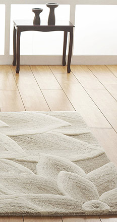 Transitional rugs image