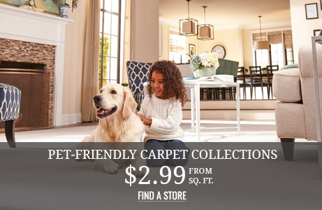 Pet-Friendly Carpet Collections from $2.99 sq.ft.