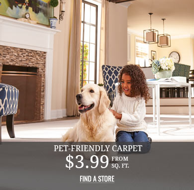 Pet-friendly Carpet from $3.99 sq.ft.