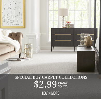 Refresh your Home with Style Special Buy Carpet Collections $2.99 sq.ft.