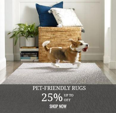 Pet Friendly Area Rugs