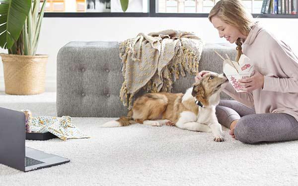 Pet Friendly Area Rugs