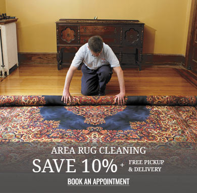 Area Rug Cleaning Save 10% plus free pickup and delivery