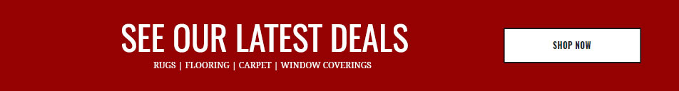 See our Latest Deals