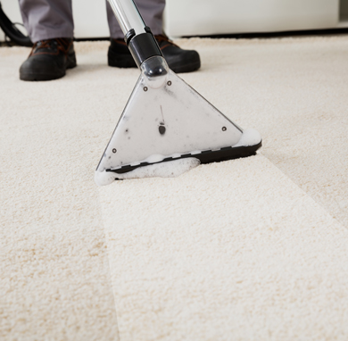 In-Home Carpet Cleaning