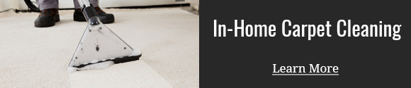 In-home professional steam extraction carpet cleaning. Vacuuming is not enough! ONLY a professional cleaning will remove the deep dirt and grit.