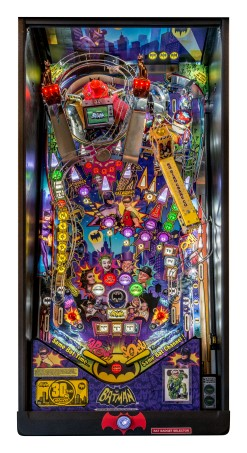 CATWOMAN PREMIUM PINBALL - Full Sized Preview