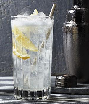 C G T (Gin Tonique aux canneberge)