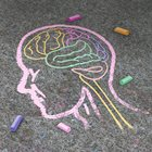 Post-traumatic Stress Disorder in Children Symptoms, Impact on the Brain, and Treatment