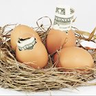 Nest Egg Trusts: A Good Planning Tool to Protect Property and Savings
