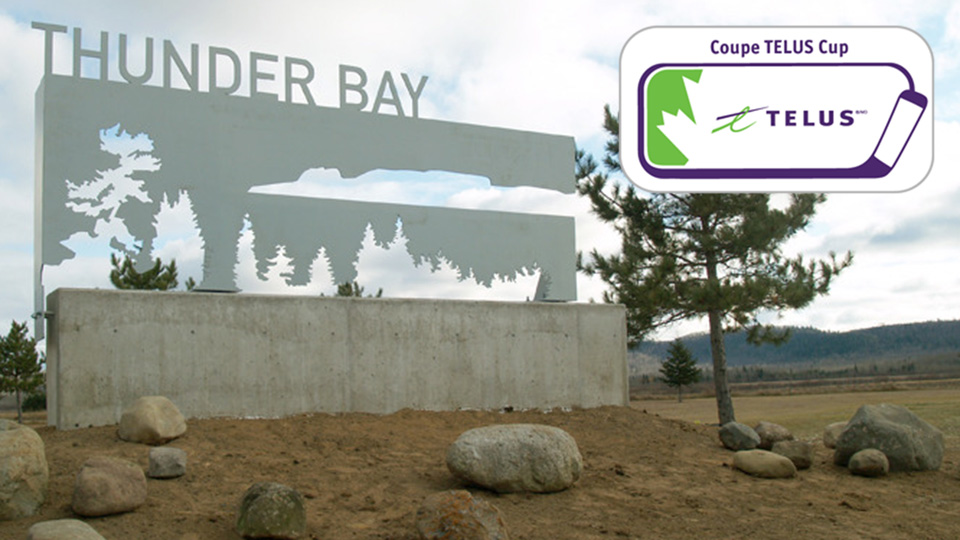 thunder bay with logo?q=60