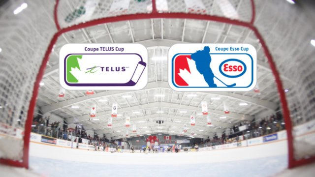 telus and esso annoucement?w=640&h=360&c=3