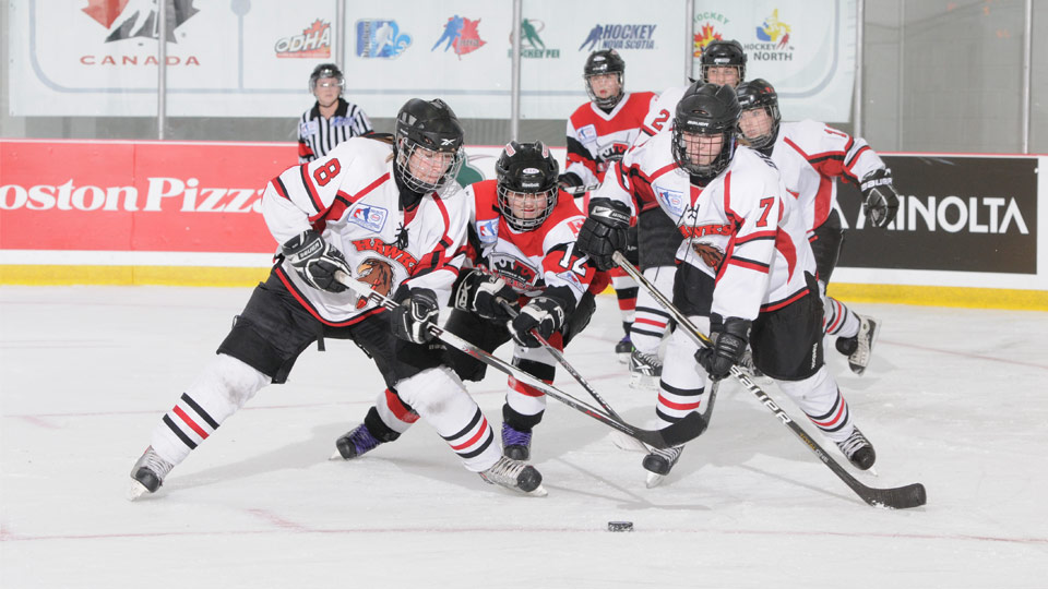 esso cup hawks queens??w=640&h=360&q=60&c=3