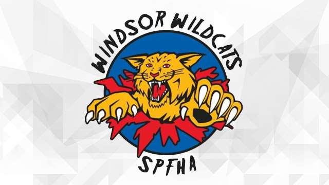 windsor wildcats logo 640
