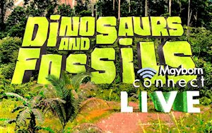 Mayborn Connect Live! Dinosaurs and Fossils