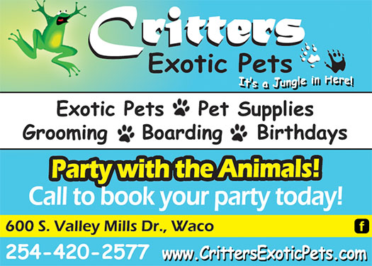 Critters Exotic Pets