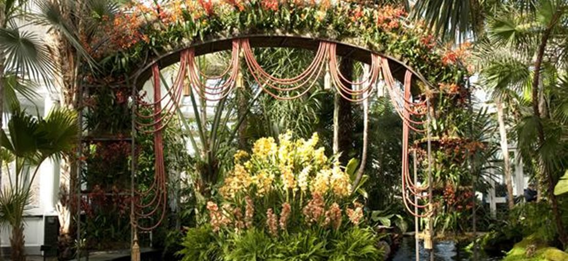 The Orchid Show at New York Botanical Garden