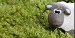 Do You Know How to Pick  Safe  Eco-Friendly Toys for Your Child?