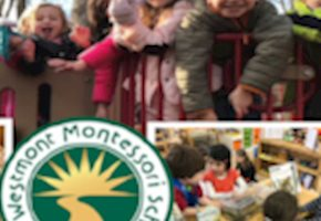 The Westmont Montessori School  Is A Unique Learning Environment