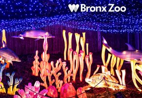 Guide to NYC Holiday Lights and Christmas Events 2020