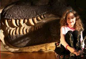 Dinosaurs Rock Offering Home Educational Activities