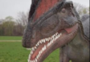 Field Station: Dinosaurs Will Join The Bergen County Parks System