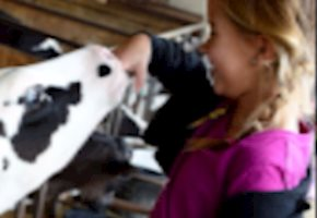 Community Member Creates Udderly Full Scholarship Program After Life-changing Experience at Fulper Farms