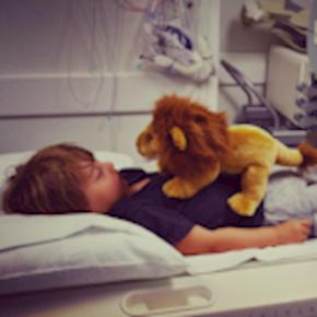 Lion Moms: Why We Roar