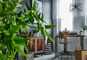 The Positive Health Effects of Flowers & Plants in Your Home