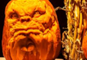 Pumpkin Fun for Everyone at RISE of the Jack O'Lanterns