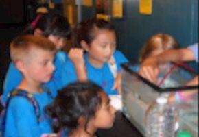 FDU Camp Discovery Celebrates 20 Years of Summer Fun!