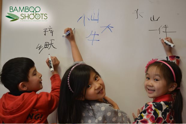 Bamboo Shoots Mandarin Immersion School