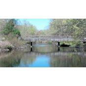 Saddle River County Park - Dunkerhook Area