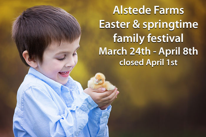 Easter and Springtime Family Festival at Alstede Farms