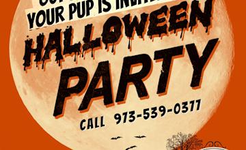 Morris Animal Inn's Halloween Slumber Party!