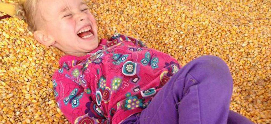 Hayrides, corn maze, pumpkin picking, corn and pumpkin cannons, pedal carts, potato sack slide and so many more fun activities.