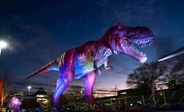 Dino Safari-Freehold Raceway Mall